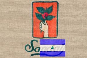 Кофе Марагоджип Никарагуа 250 г зерно