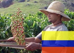 Кофе Колумбия Супремо 250 г зерно