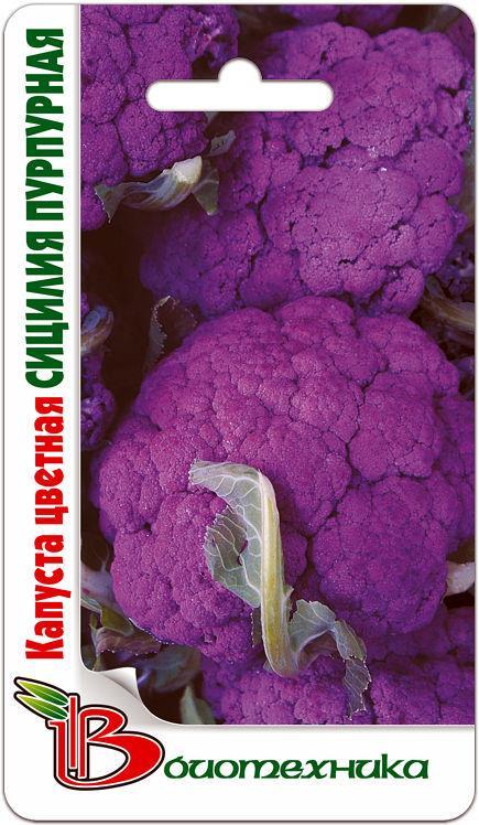 Капуста цветная Сицилия Пурпурная