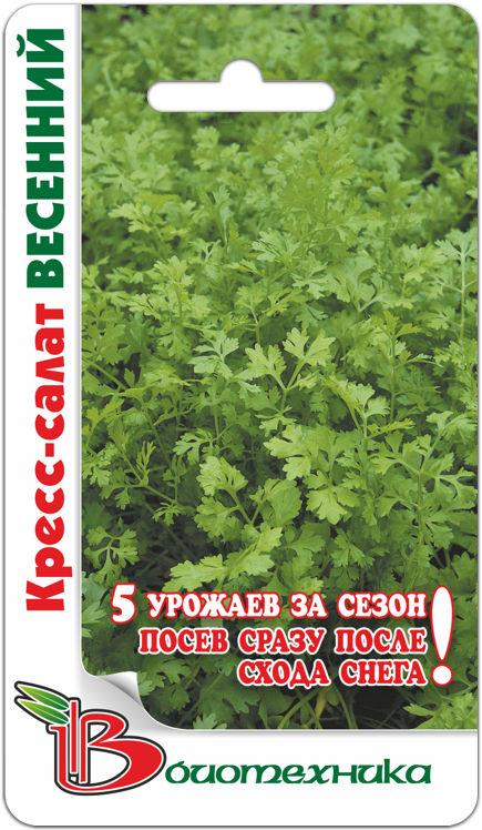 Кресс-салат Весенний