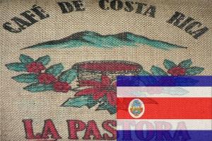 Кофе Коста-Рика Тарразу 250 г зерно