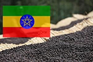 Кофе Эфиопия Сидамо 250 г зерно