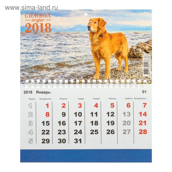 """Календарь одноблочный, моно """"Символ года - 2018 год"""" 20х24см"""