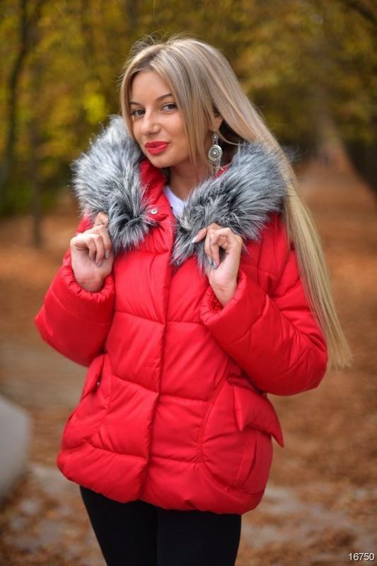 Куртка-16750