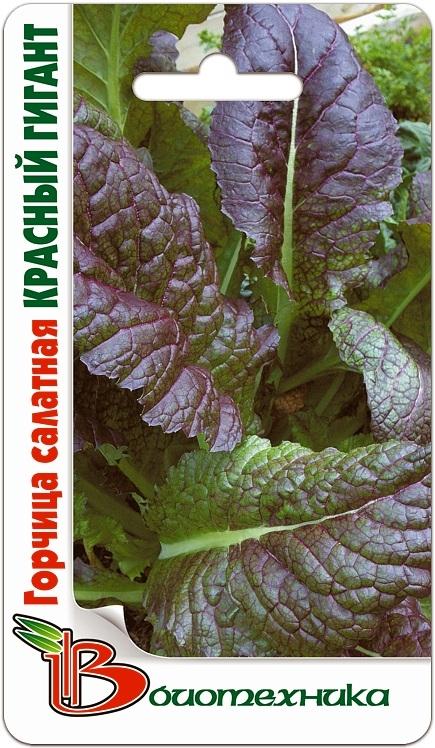 Горчица салатная Красный Гиган
