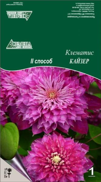 Клематисы Кайзер (2сп) ОКС 1шт СдС