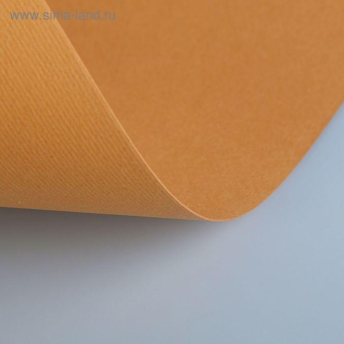 Бумага для пастели 350*500 Fabriano Cartacrea 1л 220г/м2 №103 светло-коричневый 46435103