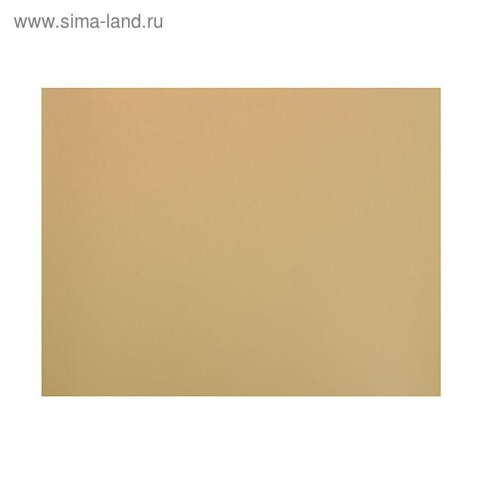 Бумага для пастели 500*650 Canson Mi-Teintes 1 л 160 г/м2 №470 Палевый бледный 200321144