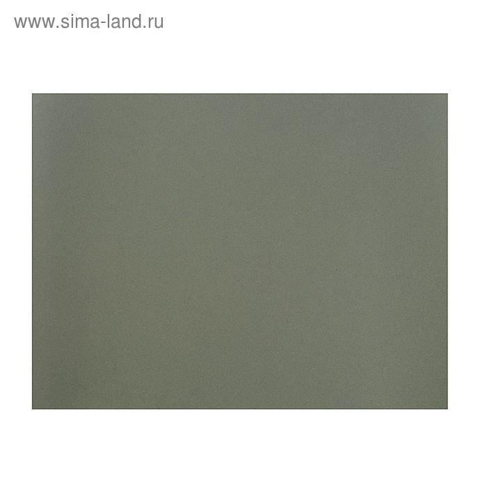 Бумага для пастели 500*650 Canson Mi-Teintes 1 л 160 г/м2 №431 Серый стальной 200331444