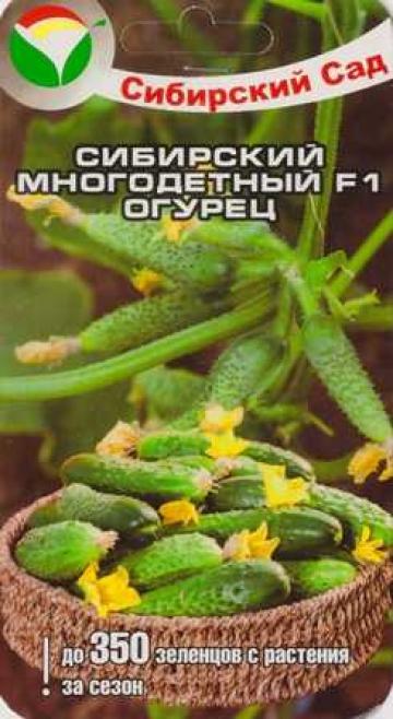 Огурец Сибирский Многодетный F1