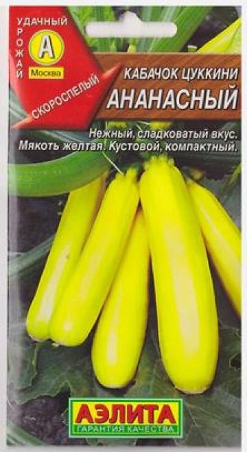 Кабачок Ананасный цуккини (Код: 81628)