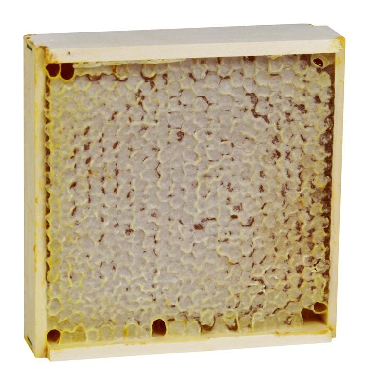 Мед в сотах акациевый мини рамка