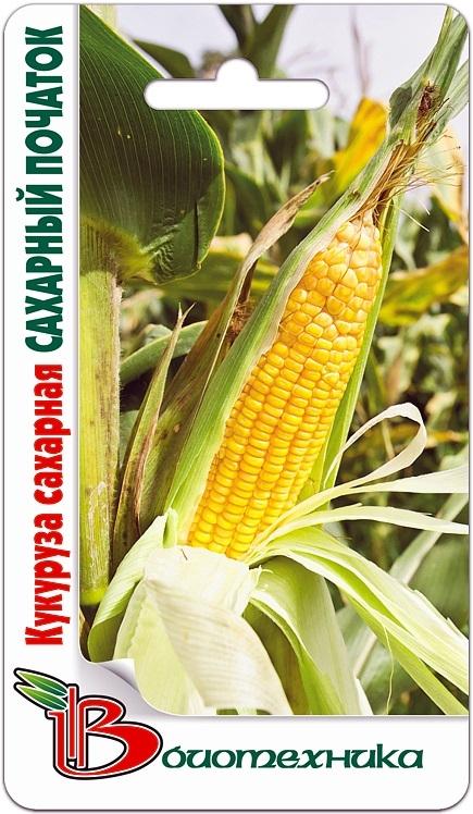 Кукуруза сахарная Сахарный початок