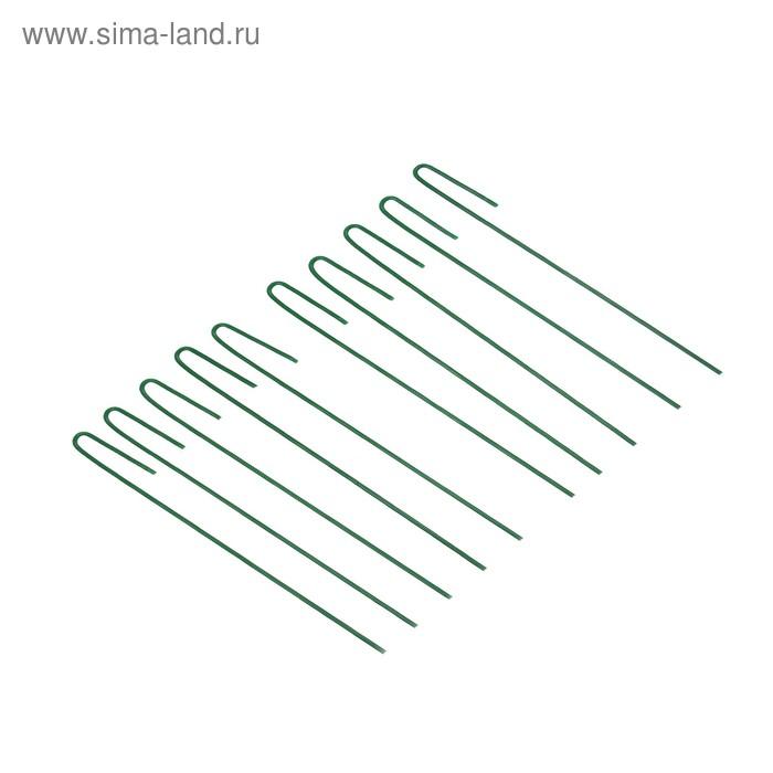 Колышек универсальный, h = 30 см, ножка d = 0.3 см, набор 10 шт., зелёный