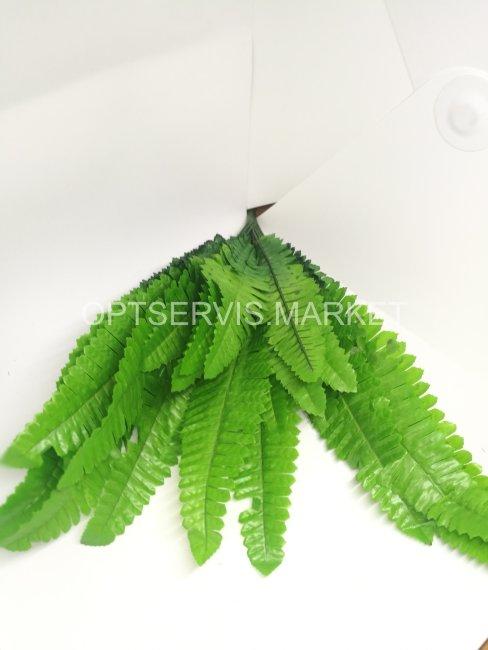 Зелень декоративная папоротник
