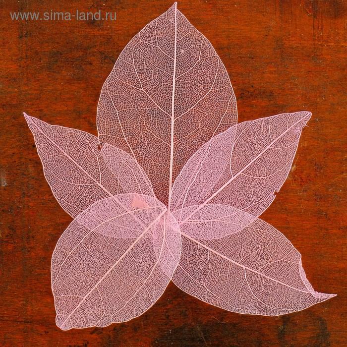 Сухие листья, (набор 5 шт), размер 1 шт 8*5, цвет розовый