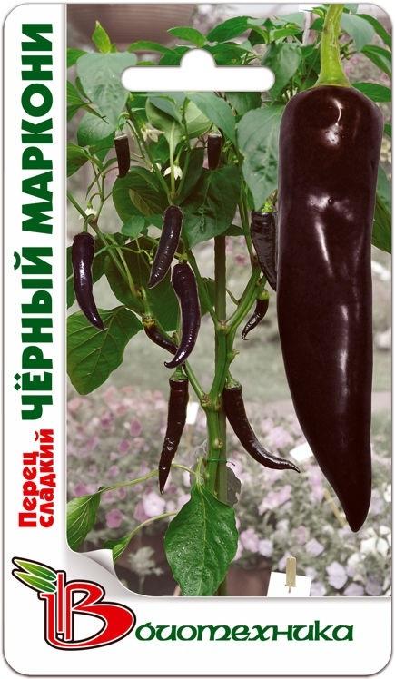 Перец сладкий Черный Маркони