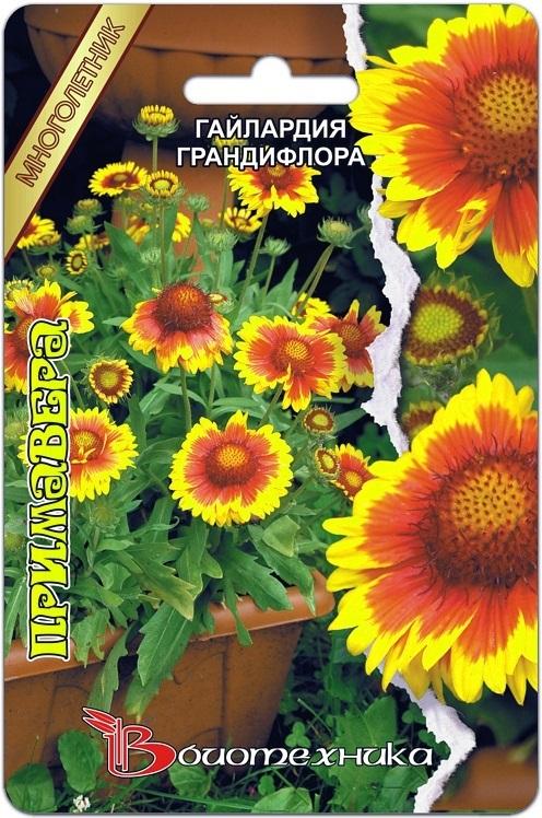 Гайлардия грандифлора Примавера