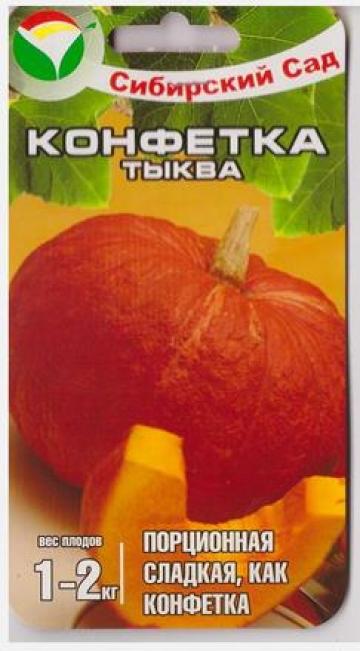 Тыква Конфетка