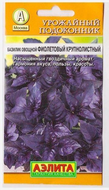 Базилик Фиолетовый крупнолистный