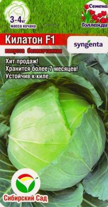 Капуста б/к Килатон