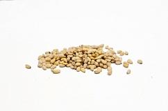 Кедровые орехи очищенные СРЕДНИЕ, Россия 1 кг
